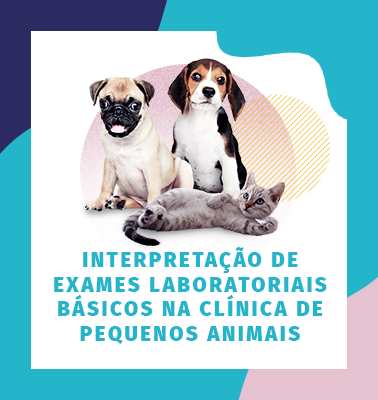 Interpretação de exames laboratoriais básicos na clínica de pequenos animais – Turma 02
